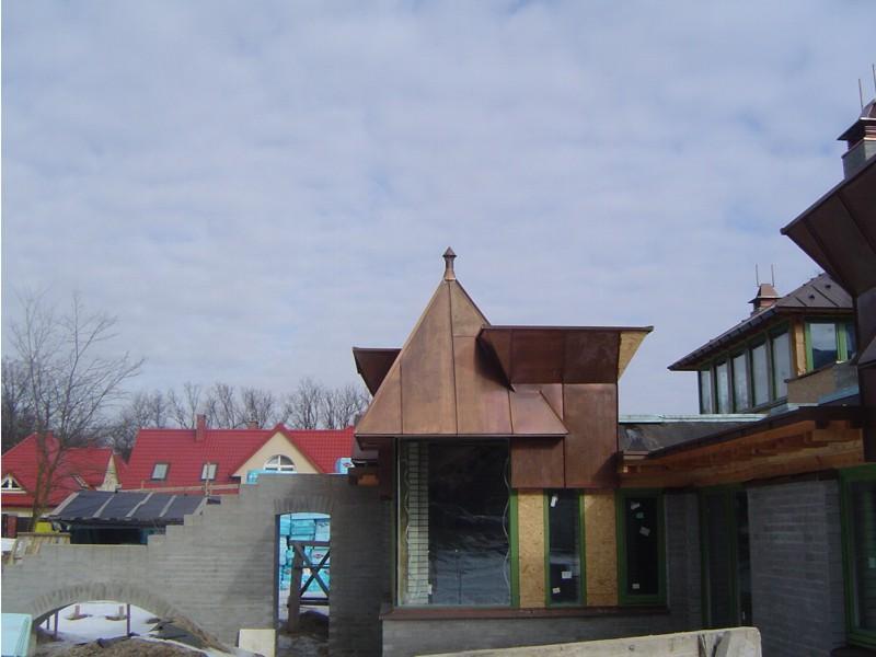 dom_XXIwieku_panele_z_miedzi_a