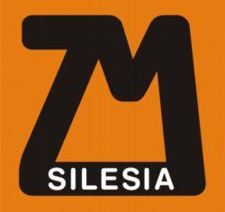 Logo M SIlesia